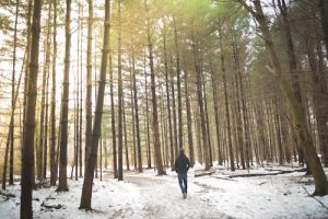 A man is shown walking in a snowy forest with big trees all around. This image represents the idea that diet and physical fitness lifestyle changes is the only true way to lose weight.