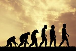 A computer generated image shows the process of human evolution from primates to where we are today.